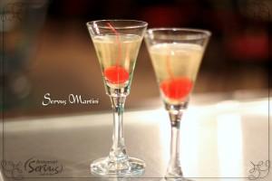 Servus Martini